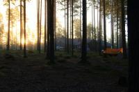 Учебные сборы в августе, Финляндия(Лиекса). Рассвет в Нейтикоски