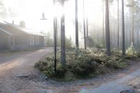 Осенняя родео-сессия в Финляндии(Лиекса). Кемпинг Нейтикоски. Утро. Туман.