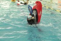 Тренировки в бассейне, декабрь 2015