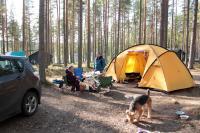 Осенняя родео-сессия в Финляндии(Лиекса). Группа поддержки.