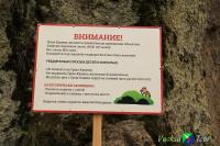 """Активный отдых на базе """"Илоранта""""."""