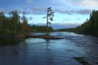 Финляндия(Лиекса). Окрестности кемпинга Нейтикоски