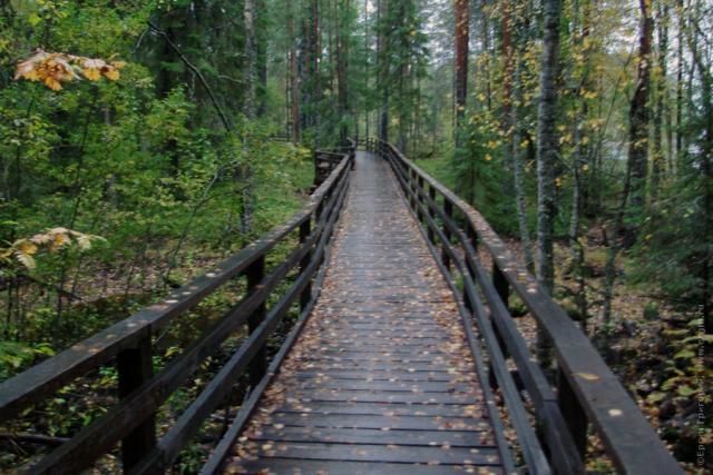 Родео-Сборы в Финляндии(Лиекса). Сентябрь 2011.