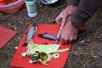 Ежегодный выезд в Норвегию, 2012г. Рецепт приготовления быстрой закуски.