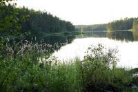 РОДЕО-СБОРЫ в Августе 2013, Финляндия(Лиекса). Прогулка в окрестностях Neitikoski