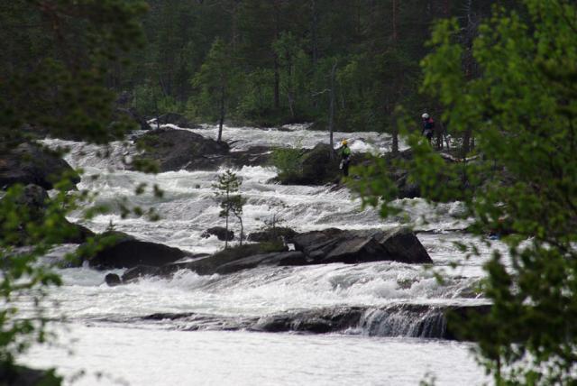 ШВЕЦИЯ, Piteälven (Trollforsarna), 2012. И вновь очередной хмурый денек.