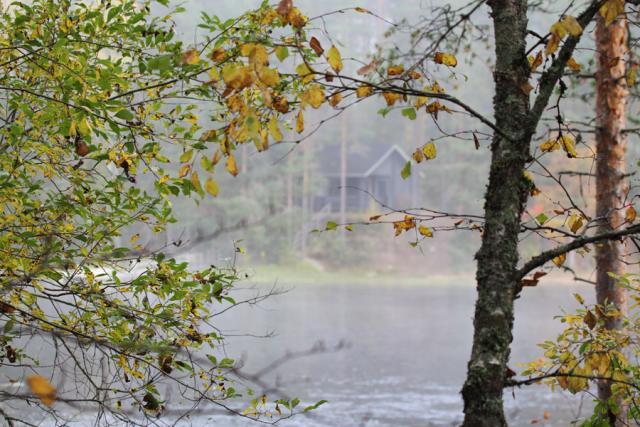 Родео-сборы в сентябре 2012, Финляндия(Лиекса). Осенний пейзаж