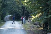 Осенняя фристайл-сессия в Европе, 2015. День отдыха. Экскурсия в Баварский лес.