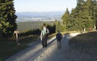 Прогулки по Баварскому лесу