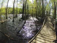 Майские родео-сборы в Финляндии. Воды очень много.
