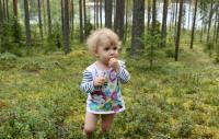 РОДЕО-СБОРЫ в Августе 2013, Финляндия(Лиекса). По ягодки))))