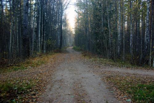 На фото: Здесь проходила железная дорога